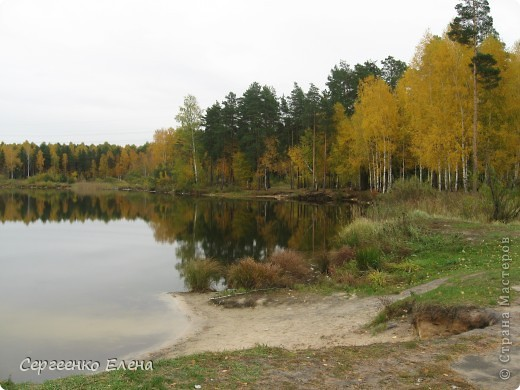 Недалеко от нашего города, в лесу есть очень красивое озеро.  Предлагаю Вам полюбоваться пейзажами. К сожалению была пасмурная погода, представляете, как было бы красиво в солнечный день! С фотоаппаратом я обошла вокруг озера. Вот что я наснимала. фото 1