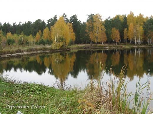 Недалеко от нашего города, в лесу есть очень красивое озеро.  Предлагаю Вам полюбоваться пейзажами. К сожалению была пасмурная погода, представляете, как было бы красиво в солнечный день! С фотоаппаратом я обошла вокруг озера. Вот что я наснимала. фото 2