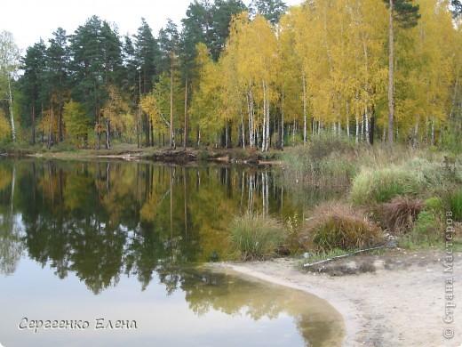 Недалеко от нашего города, в лесу есть очень красивое озеро.  Предлагаю Вам полюбоваться пейзажами. К сожалению была пасмурная погода, представляете, как было бы красиво в солнечный день! С фотоаппаратом я обошла вокруг озера. Вот что я наснимала. фото 3