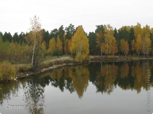 Недалеко от нашего города, в лесу есть очень красивое озеро.  Предлагаю Вам полюбоваться пейзажами. К сожалению была пасмурная погода, представляете, как было бы красиво в солнечный день! С фотоаппаратом я обошла вокруг озера. Вот что я наснимала. фото 4