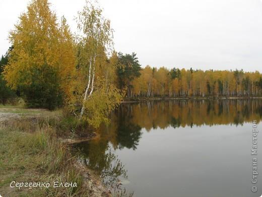 Недалеко от нашего города, в лесу есть очень красивое озеро.  Предлагаю Вам полюбоваться пейзажами. К сожалению была пасмурная погода, представляете, как было бы красиво в солнечный день! С фотоаппаратом я обошла вокруг озера. Вот что я наснимала. фото 5