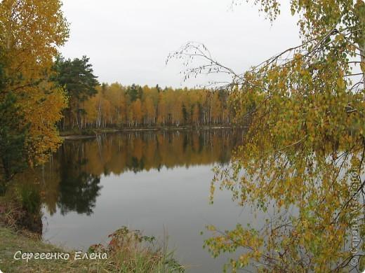 Недалеко от нашего города, в лесу есть очень красивое озеро.  Предлагаю Вам полюбоваться пейзажами. К сожалению была пасмурная погода, представляете, как было бы красиво в солнечный день! С фотоаппаратом я обошла вокруг озера. Вот что я наснимала. фото 6