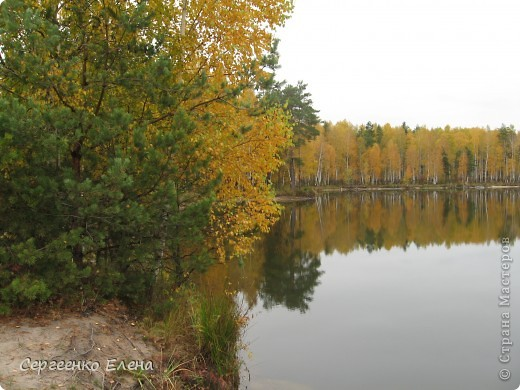 Недалеко от нашего города, в лесу есть очень красивое озеро.  Предлагаю Вам полюбоваться пейзажами. К сожалению была пасмурная погода, представляете, как было бы красиво в солнечный день! С фотоаппаратом я обошла вокруг озера. Вот что я наснимала. фото 7