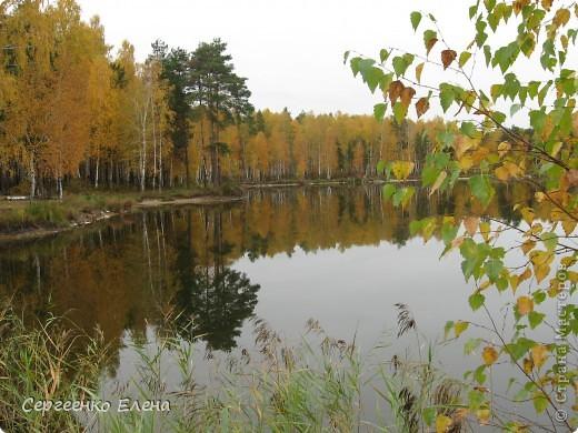 Недалеко от нашего города, в лесу есть очень красивое озеро.  Предлагаю Вам полюбоваться пейзажами. К сожалению была пасмурная погода, представляете, как было бы красиво в солнечный день! С фотоаппаратом я обошла вокруг озера. Вот что я наснимала. фото 10