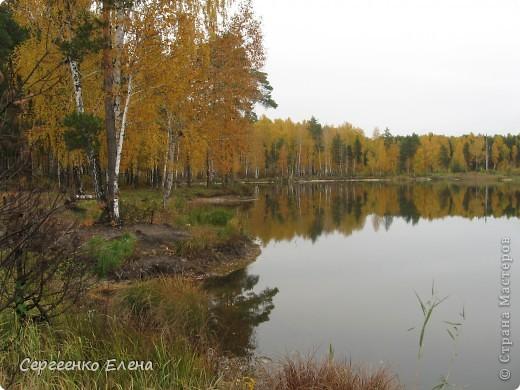 Недалеко от нашего города, в лесу есть очень красивое озеро.  Предлагаю Вам полюбоваться пейзажами. К сожалению была пасмурная погода, представляете, как было бы красиво в солнечный день! С фотоаппаратом я обошла вокруг озера. Вот что я наснимала. фото 11