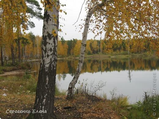 Недалеко от нашего города, в лесу есть очень красивое озеро.  Предлагаю Вам полюбоваться пейзажами. К сожалению была пасмурная погода, представляете, как было бы красиво в солнечный день! С фотоаппаратом я обошла вокруг озера. Вот что я наснимала. фото 13