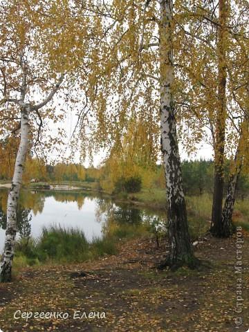Недалеко от нашего города, в лесу есть очень красивое озеро.  Предлагаю Вам полюбоваться пейзажами. К сожалению была пасмурная погода, представляете, как было бы красиво в солнечный день! С фотоаппаратом я обошла вокруг озера. Вот что я наснимала. фото 14