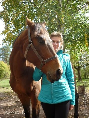 На прошлой неделе получилось выбраться в гости к брату) Живет в лесу, работает егерем, вместе с женой держат лошадей и обучают верховой езде. Жена - профессиональный тренер по конному спорту. фото 4