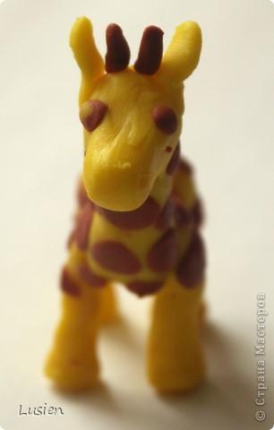 Это у меня Жираф. Надеюсь, что получилось узнаваемо:)) фото 2