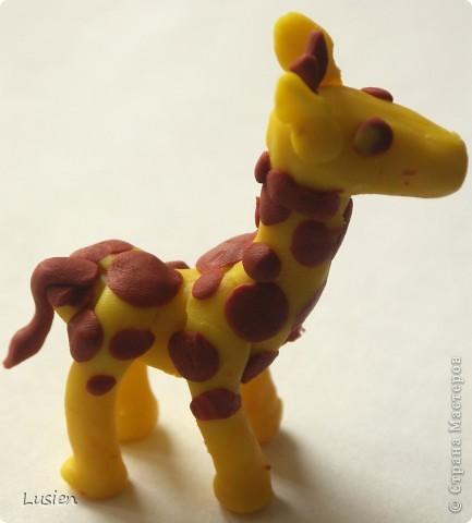 Это у меня Жираф. Надеюсь, что получилось узнаваемо:)) фото 3