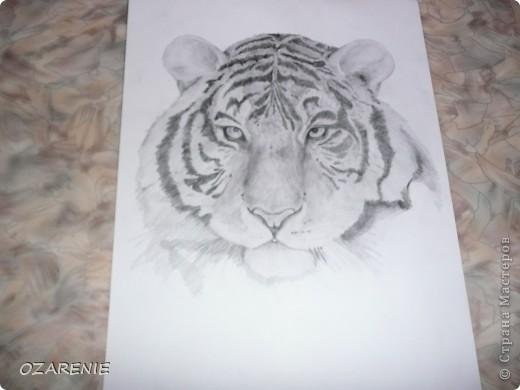 Нарисовано без карандашного наброска и очень быстро... под настроение фото 3