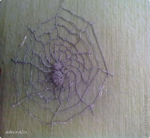 паук на паутине фото 1