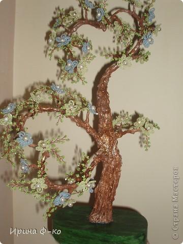 заказали на подарок дерево любви. пересмотрела все деревья на нашем сайте и больше всех понравилось у БоГиНи ЕвГеНиИ. вот и сделала подобное. спасибо ей огромное за образец! фото 4