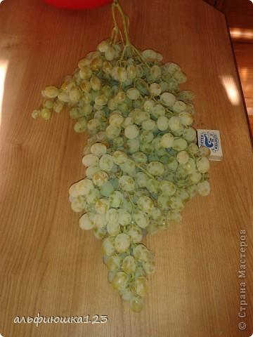 Виноградная гроздь фото 3