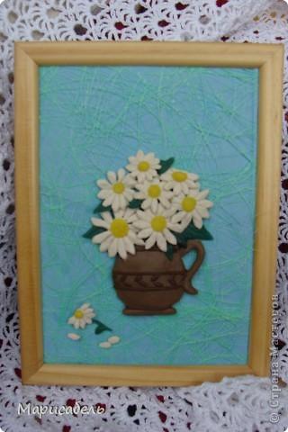 Летом в подарок бабушке решили, с дочей,  сделать коллекцию картин с цветами. Использовали  пластику ИГРОформ (очень нравится она нам) Сушили 2 дня, приклеивали моментом. Вот что получилось: фото 2