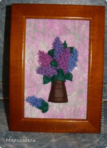Летом в подарок бабушке решили, с дочей,  сделать коллекцию картин с цветами. Использовали  пластику ИГРОформ (очень нравится она нам) Сушили 2 дня, приклеивали моментом. Вот что получилось: фото 5