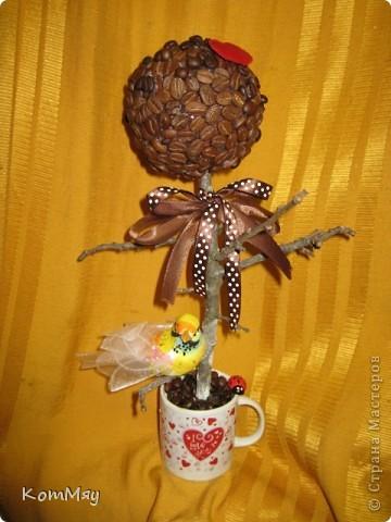 Очередной день рождения у родственника - и очередное кофейное деревце с птицей счастья в подарок фото 1