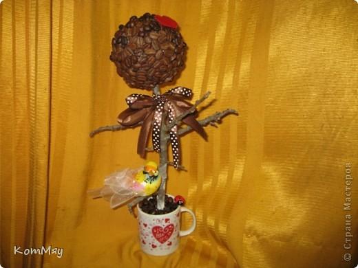 Очередной день рождения у родственника - и очередное кофейное деревце с птицей счастья в подарок фото 2
