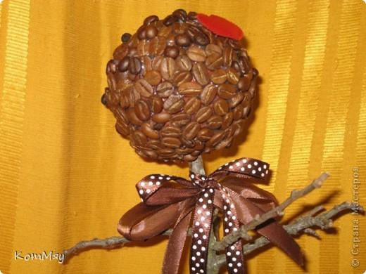 Очередной день рождения у родственника - и очередное кофейное деревце с птицей счастья в подарок фото 3