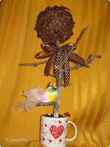 Очередной день рождения у родственника - и очередное кофейное деревце с птицей счастья в подарок фото 4