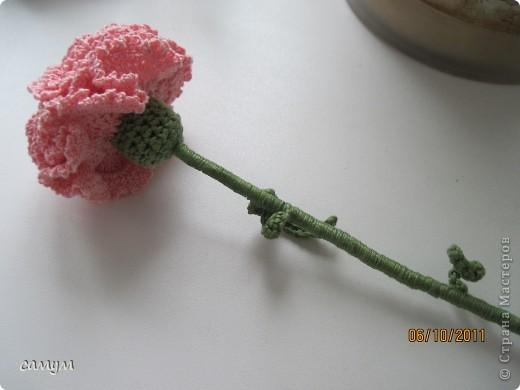 Вязание крючком гвоздики и