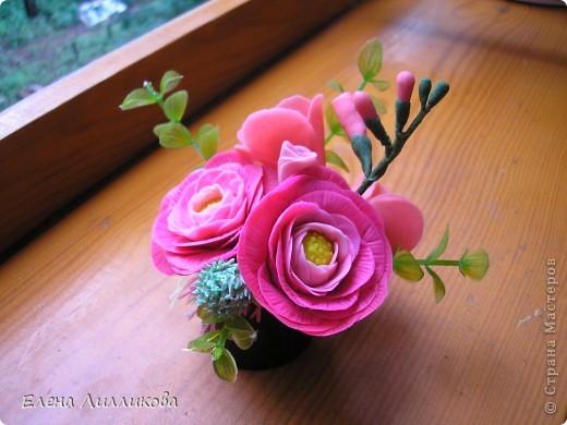 Цветы уходящего лета. фото 1