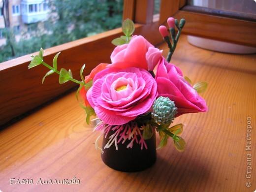 Цветы уходящего лета. фото 4