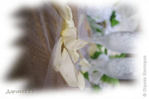 Морозный поцелуй фото 5