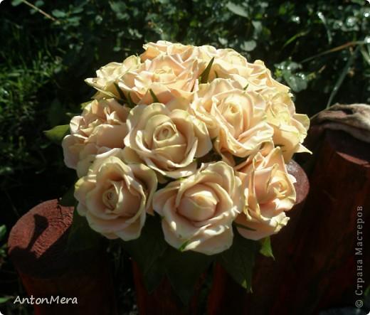 Вот у меня «распустились» розы в пастельных тонах.   фото 1