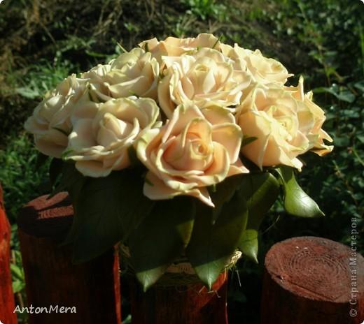 Вот у меня «распустились» розы в пастельных тонах.   фото 3