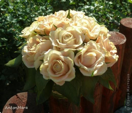 Вот у меня «распустились» розы в пастельных тонах.   фото 5