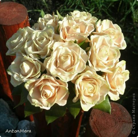 Вот у меня «распустились» розы в пастельных тонах.   фото 2