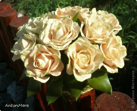 Вот у меня «распустились» розы в пастельных тонах.   фото 4