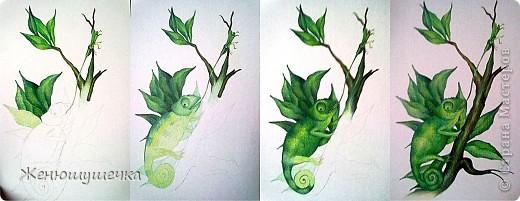 Нужно было нарисовать хамелеона(из книги - не своя фантазия))))) - решили зафоткать этапы)))Акварельные карандаши(больше всего люблю!)