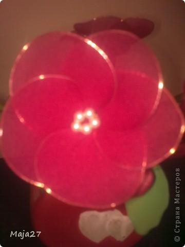Цветы из капрона. фото 6