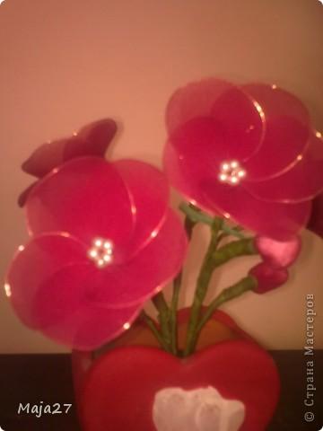Цветы из капрона. фото 5