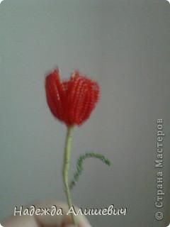 Вот решила вспомнить, что такое бисероплитение) На меня когбудто нашло озорения и я сделала 3-и розы, правдо остальные две ещё на дороботке) фото 7