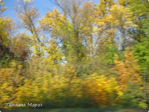 Люблю собирать шиповник. А осень у нас сейчас - просто сказочная!!!!! Тепло и буйство осенних красок.... фото 26