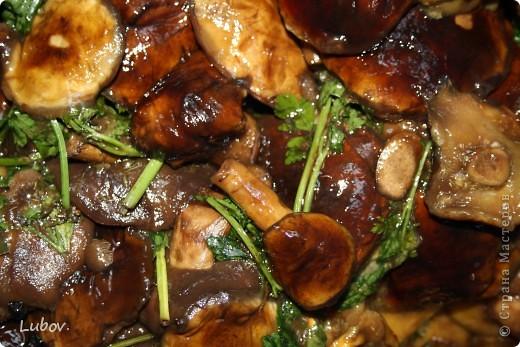 В этом году очень много польских грибов. Мы их и мариновали, и жарили, и уже не знали, что с ними делать.  Решили попробовать засолить холодным способом.  фото 11