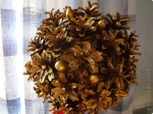 К празднику осени в детском саду появилось золотое дерево из шишек. фото 2