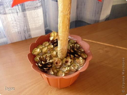 К празднику осени в детском саду появилось золотое дерево из шишек. фото 3