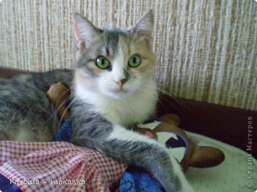 Таких кошек в сети много, знаю, но я ведь только начинаю учиться пошиву игрушек:) Вот такая девочка родилась вчера ночью. фото 4