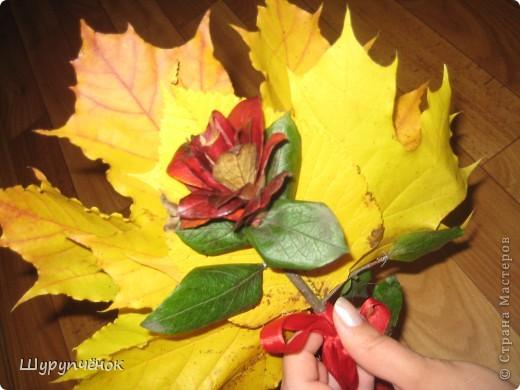Цветок из лепестков...с какого-то кустика)) Для выставки к Дню Учителя. фото 1