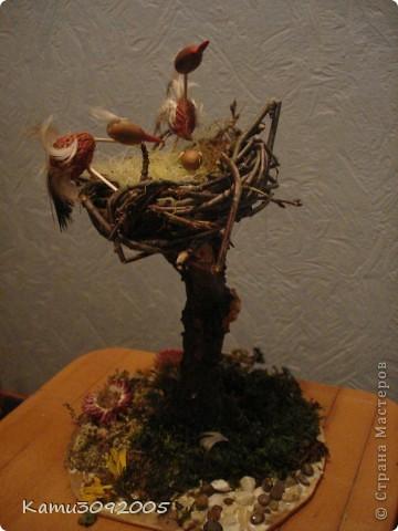 Сыну в садик на конкурс подделок из природнего материала фото 1