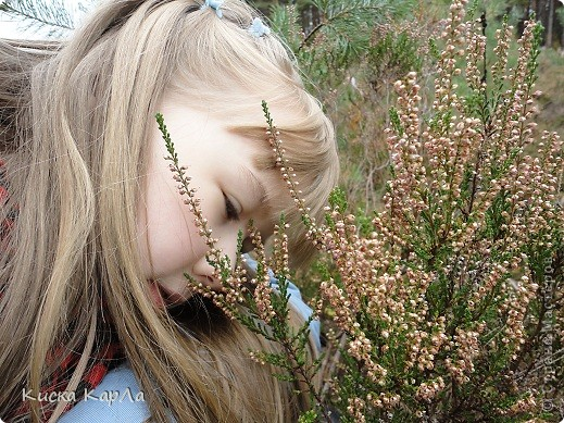 ... такая тишина, такая красота !!! Погуляйте вместе со мной и сами всё увидите. фото 13