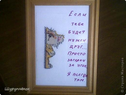 Подарок к летнему сюрприза в рамках вышивального форума. Живёт теперь в Украине, в Симферополе. Иностранец.)) фото 13