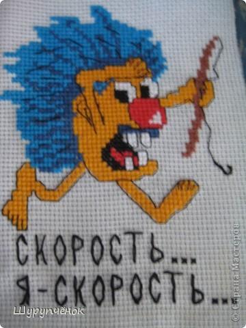 Подарок к летнему сюрприза в рамках вышивального форума. Живёт теперь в Украине, в Симферополе. Иностранец.)) фото 16