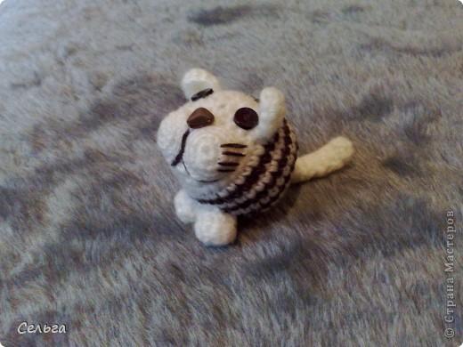 Просящий котик (он звенит, в голове теннисный шарик с бусинками). фото 1
