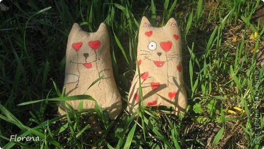 Влюблённые коты . фото 2
