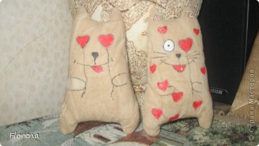 Влюблённые коты . фото 1